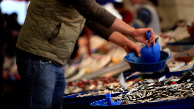 fish market - seafood stock videos & royalty-free footage