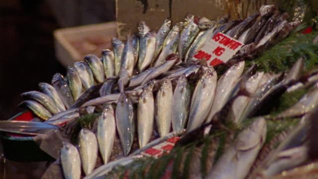 ms fish on display at market/ istanbul - fianco a fianco video stock e b–roll