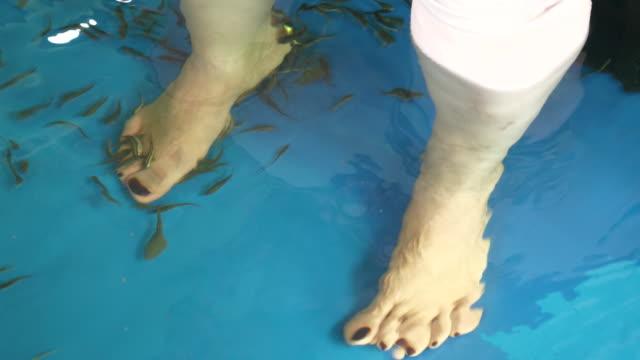 CU : Fish Pedicure Spa Treatment