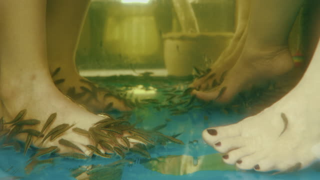 cu : fish pedicure spa treatment - pedicure stock videos & royalty-free footage