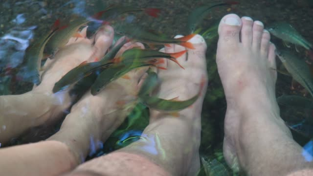 fish spa - pedicure stock videos & royalty-free footage