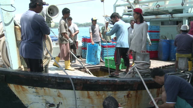 MS ZI ZO PAN Fish stock coming out of hold / Kota Kinabalu, Sabah, Malaysia