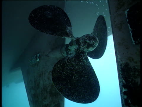 fish swim near static ship's propeller, galapagos - propeller stock videos & royalty-free footage