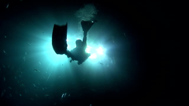 fish swim past a scuba diver that swims toward surface lights. - surfacing stock videos & royalty-free footage