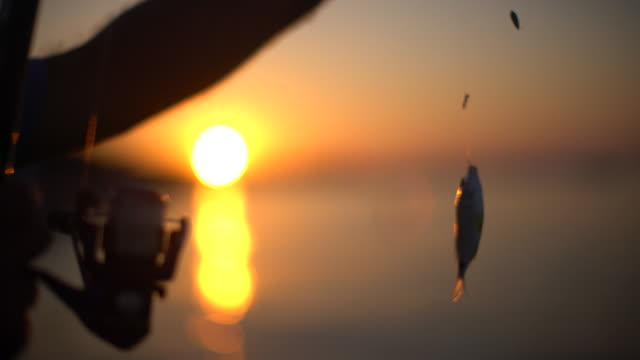 fisherman and the sea - hook stock videos and b-roll footage