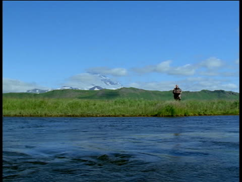fisherman approaches river with fishing rod, unimak island, alaska - aleutian islands stock videos and b-roll footage