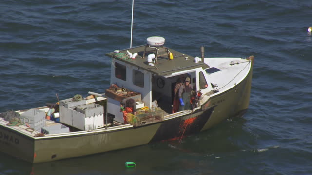 ws ts aerial pov fisherman catching fishes and unloading lobster pot at mount desert island / hancock county, maine, united states - maine stock videos & royalty-free footage