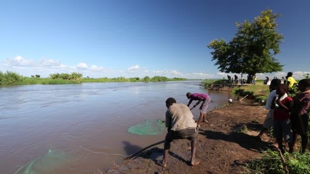 vídeos de stock e filmes b-roll de fisherman catching small fish in the shire river in nsanje, malawi. - captura de peixe