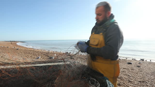 fisherman clears his nets after a fishing trip in hastings, uk on wednesday, november 4, 2020. - kelp stock videos & royalty-free footage