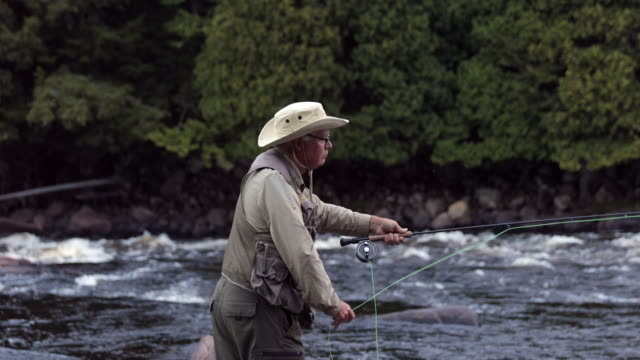 fisherman fly fishing in river at sunrise - fishing stock videos and b-roll footage