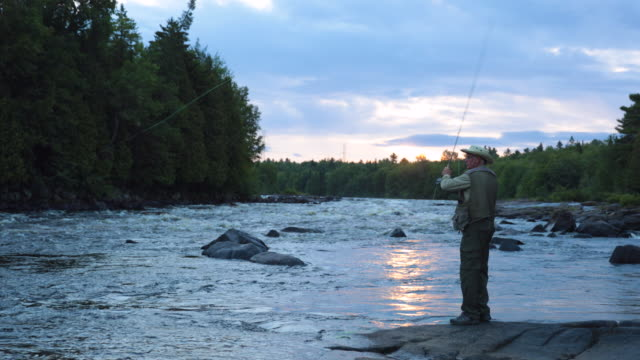 fisherman fly fishing in river at sunrise - fly fishing stock videos and b-roll footage