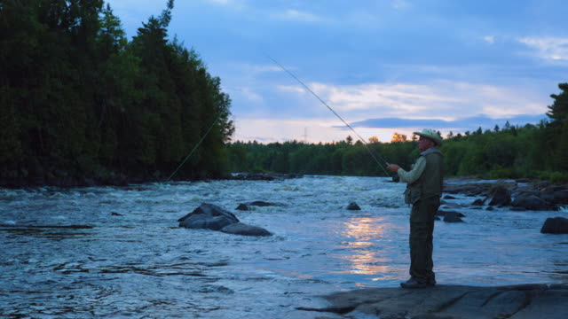 fisherman fly fishing in river at sunrise - fishing stock videos & royalty-free footage