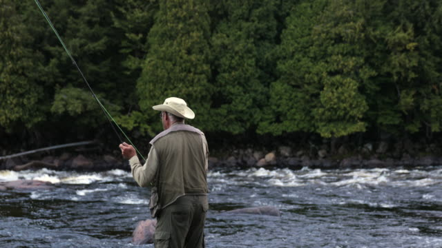 fisherman fly fishing in river in the morning - fishing stock videos & royalty-free footage