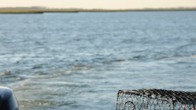 WS PAN Fisherman in marsh and throwing crab pot into water / Mobile Bay, Alabama, USA