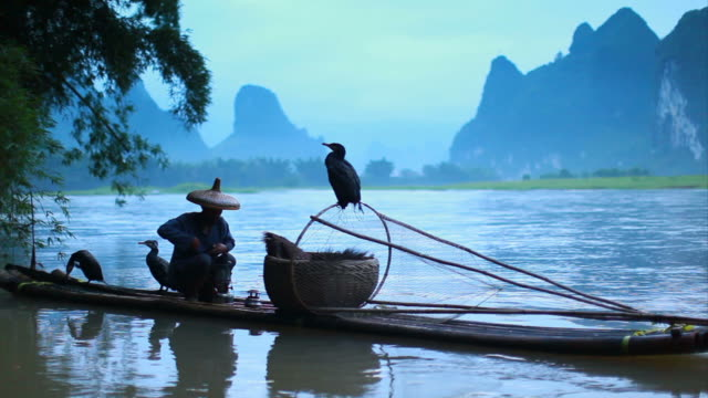 fisherman on li river - chinese ethnicity stock videos & royalty-free footage