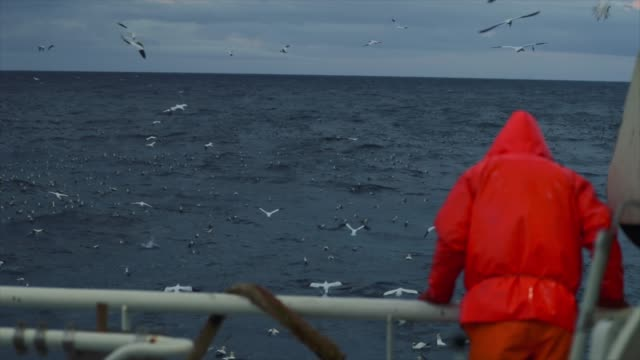 fisherman on the deck of a fishing boat in a stormy sea - ocean stock videos & royalty-free footage