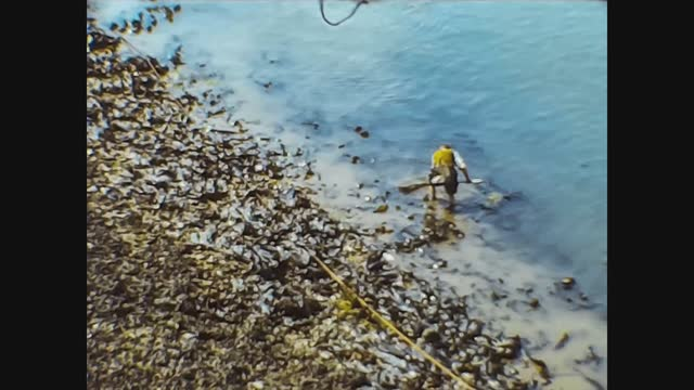 fisherman on the river bank - freshwater stock videos & royalty-free footage