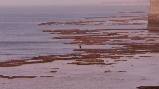 fisherman outside the sea wall of akko, israel, middle east - akko stock videos and b-roll footage