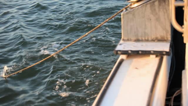 ws tu fisherman pulling crab pot out of water into boat / mobile bay, alabama, usa  - 中年の男性だけ点の映像素材/bロール