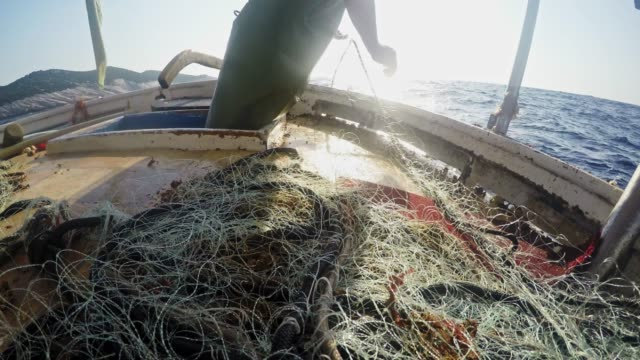fisherman pulling nets on sunny fishing boat - fisherman stock videos & royalty-free footage
