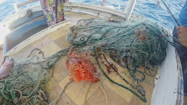 漁船の網を引き上げる漁師 - 引く点の映像素材/bロール