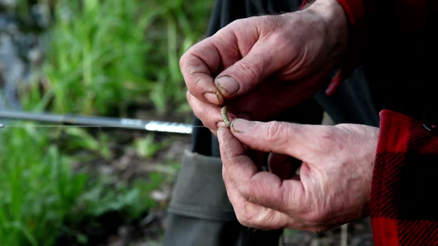 fisherman putting the bait on the fishing hook - hook stock videos & royalty-free footage