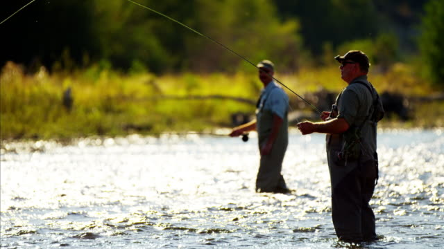fisherman rod and reel casting in river canada - wilderness stock videos & royalty-free footage