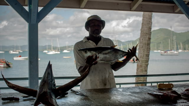 a fisherman sells fish at the fish market of st. anne, martinique - fisherman stock videos and b-roll footage