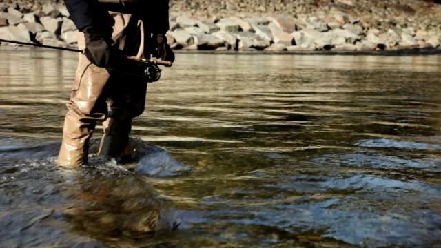 ms fisherman standing in cheakamus river, low section, squamish, british columbia, canada - camminare nell'acqua video stock e b–roll