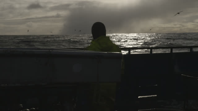fisherman stands at side of boat, alaska. - fisherman stock videos & royalty-free footage
