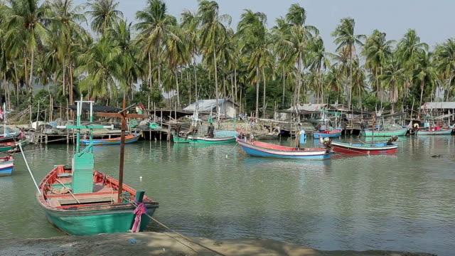 漁師ヴィラージュ - tropical climate点の映像素材/bロール
