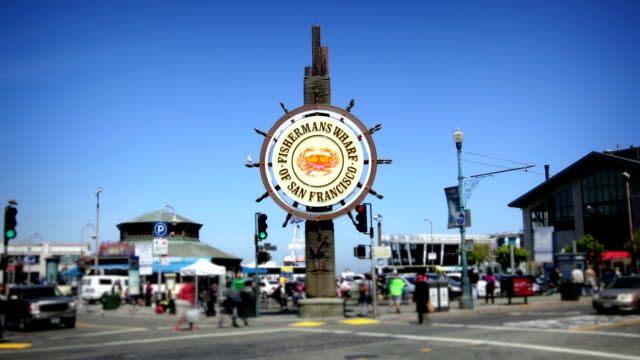 fisherman's wharf, san francisco - san francisco california stock videos & royalty-free footage