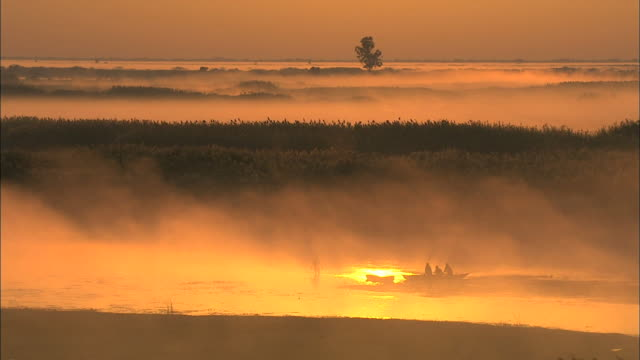 fishermen at bangweulu marsh with thick water fog at dawn, zambia, africa - silhouette stock videos & royalty-free footage