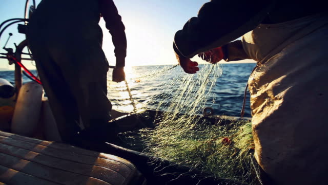 fishermen at work: industrial professional fishing - trawler stock videos & royalty-free footage