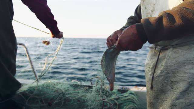 fishermen at work on the fishing boat: pulling the nets - fishing stock videos & royalty-free footage