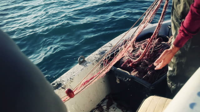 fishermen at work, pulling the nets - commercial fishing net stock videos & royalty-free footage