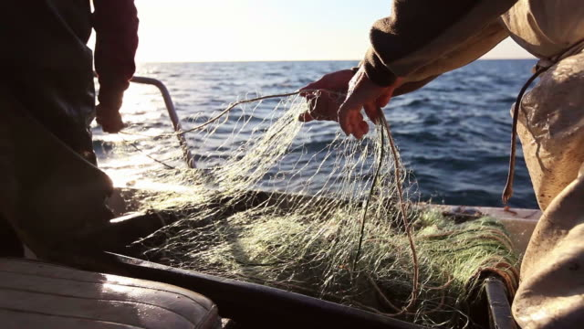 fishermen at work, pulling the nets - fisherman stock videos & royalty-free footage