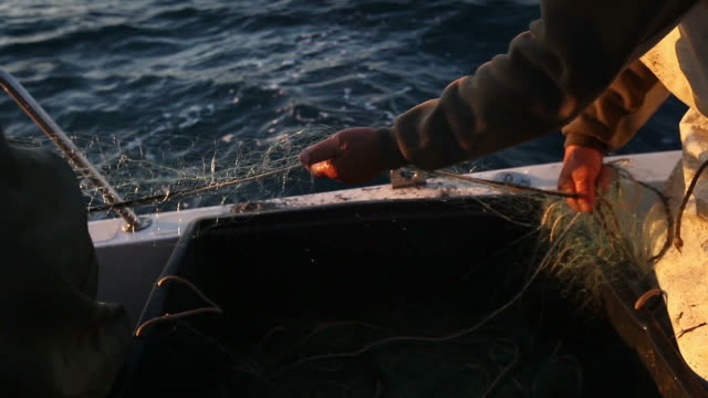 fishermen at work, pulling the nets - fishing net stock videos & royalty-free footage