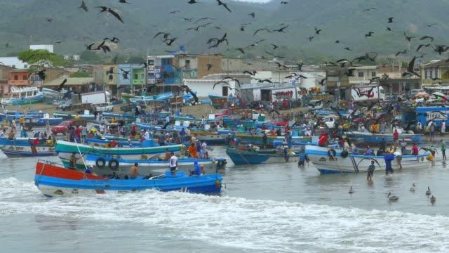 fishermen boats and birds on beach in ecuador - pescatore video stock e b–roll