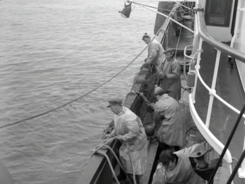 fishermen cast their nets from a trawler. - brandungsfischen stock-videos und b-roll-filmmaterial