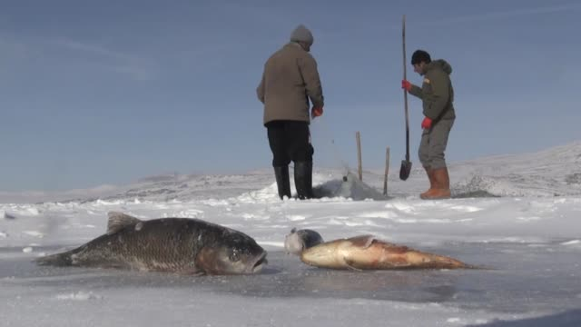 fishermen dig holes in the ice to catch fish on the frozen lake cildir in kars province of eastern turkey on january 22 2019 interviews with... - kars stock videos & royalty-free footage