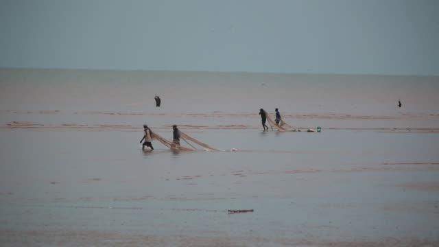Fishermen Dragging Net On Beach