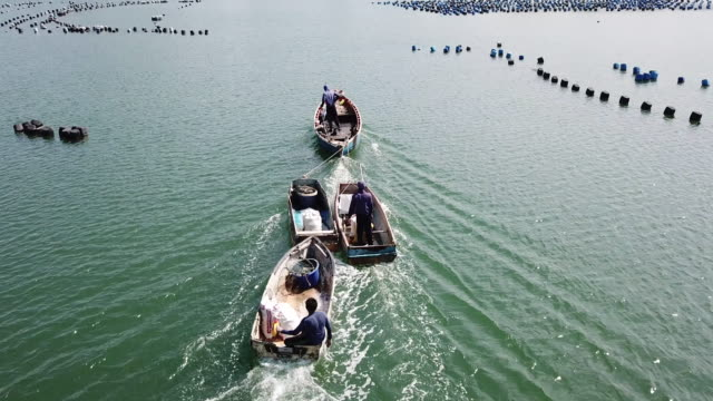 vídeos de stock e filmes b-roll de fishermen driving a boat - sem saída conceito