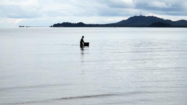 vídeos de stock e filmes b-roll de fishermen fish for the morning. - grupo médio de animais