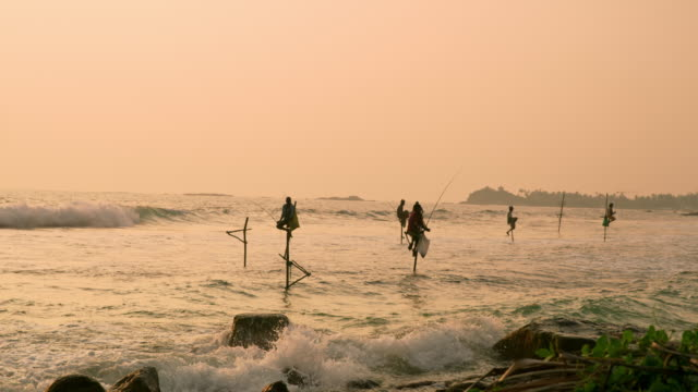 ms fishermen fishing from posts over ocean at sunset,sri lanka - fisherman stock videos and b-roll footage
