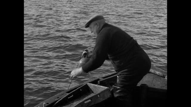 montage fishermen fishing on rowboat / united kingdom - fischer stock-videos und b-roll-filmmaterial