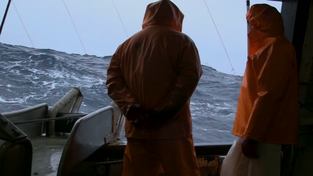 fishermen look out from longline fishing vessel - two people stock videos & royalty-free footage