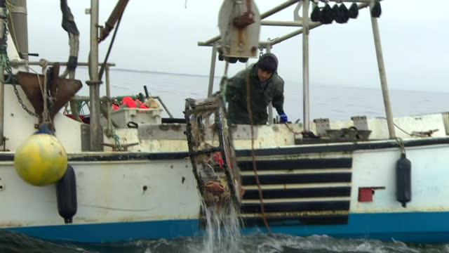 fishermen on the water in monterey bay - fisherman stock videos & royalty-free footage