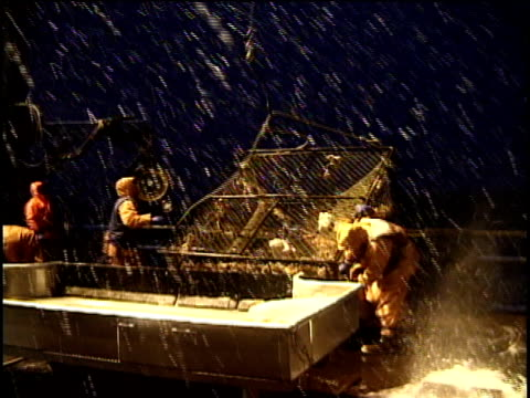 MS, Fishermen opening crab pot on deck of ship and dumping them onto table for sorting, snowy night, Bering Sea, Alaska, USA