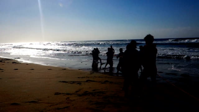 Fishermen pulling in empty nets during the annual Sardine Run in KwaZulu Natal South Africa The last few years has seen fishermen pulling in less and...